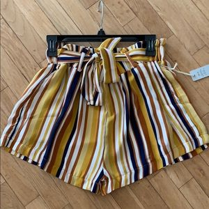 Iris multi color striped shorts